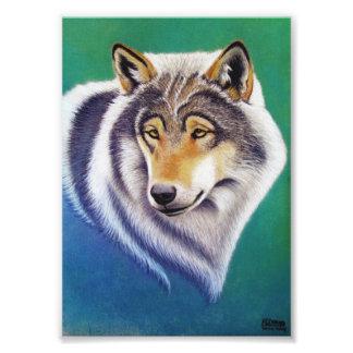 grey wolf animal portrait in pastel photo print