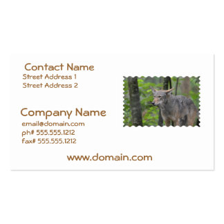 Grey Wolf Business Cards
