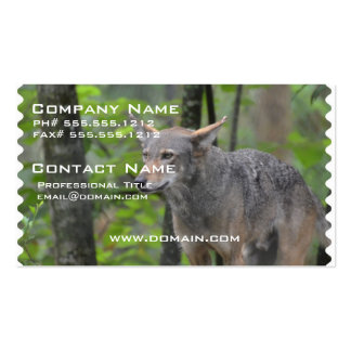 Grey Wolf Business Card Templates
