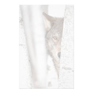 Grey Wolf (Canis lupus) Behind Tree Stationery Paper