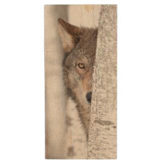 Grey Wolf (Canis lupus) Behind Tree Wood USB Flash Drive
