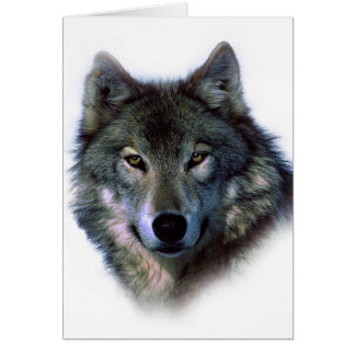 Grey Wolf Eyes Card