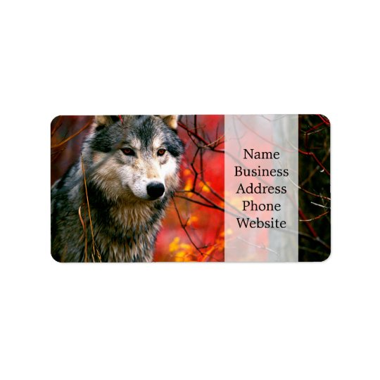 Grey Wolf in Beautiful Red and Yellow Foliage Address Label