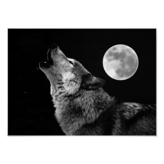 Grey Wolf & Moon Poster Print