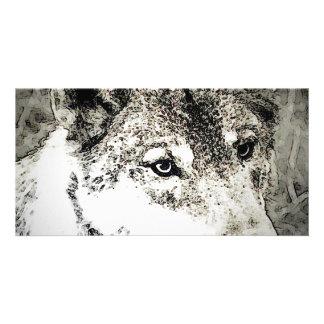 Grey Wolf Portrait Customized Photo Card