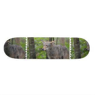 Grey Wolf Skateboard Deck