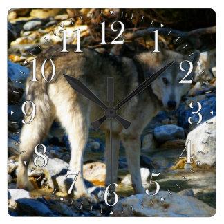 Grey Wolf & Stony Creek Photo Clock