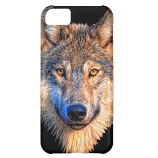 Grey wolf - wolf face iPhone 5C case