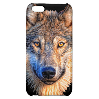 Grey wolf - wolf face iPhone 5C covers