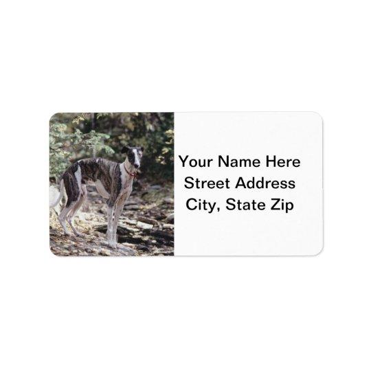 Greyhound Address Label