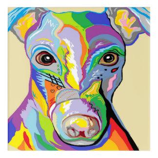 Greyhound Close Up Acrylic Wall Art