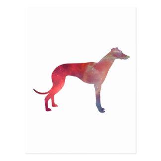 Greyhound cosmos silhouette postcard