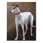 Greyhound Dog Art Postcard