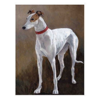 Greyhound Dog Art Postcard