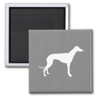 Greyhound Dog Square Magnet