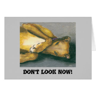 greyhound, DON'T LOOK NOW! Card