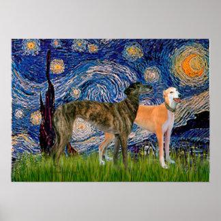 Greyhound Pair - Starry Night Poster