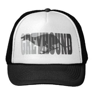 Greyhound Silhouette, Grey Cap