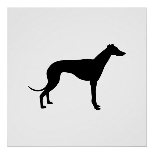 Greyhound Silhouette Poster