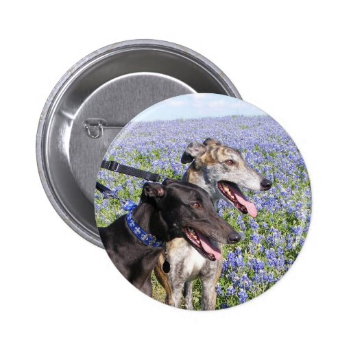 Greyhounds & Bluebonnets Pin