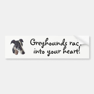 Greyhounds race into your heart bumper sticker