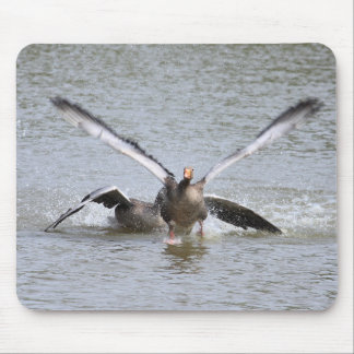 Greylag Goose Mouse Pads