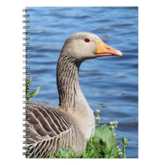 Greylag Goose Notebooks