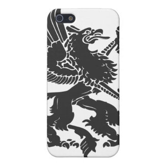 Griffin iPhone 5/5S Case