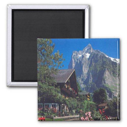 Grindelwald, Jungfrau region Fridge Magnet