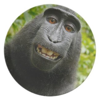 Grinning Monkey Plate