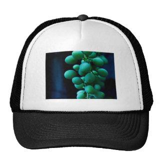 grip on grapes trucker hats