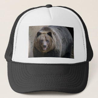 Grizzle Bear4x6 Trucker Hat