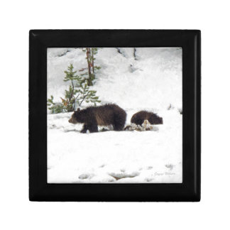 Grizzlies in the Snow Small Square Gift Box
