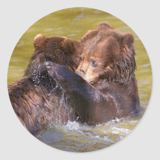 Grizzlies in the water classic round sticker