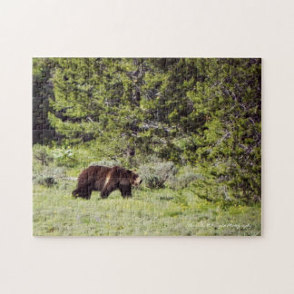 Grizzly 252 Piece Puzzle