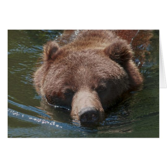 Grizzly Bear Card