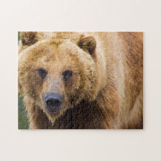 Grizzly Bear Close Enough Jigsaw Puzzle