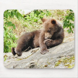 grizzly bear cub mousepad