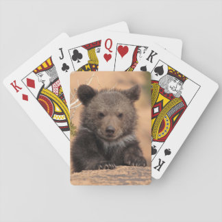 Grizzly Bear Cub Playing Cards