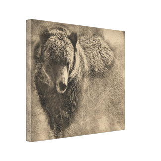 Grizzly Bear Digital Pencil Drawing on Canvas Canvas Print