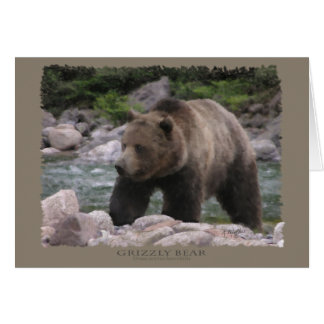 Grizzly Bear - Pastels Card