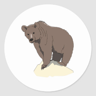 grizzly-bear-standing-on-rock-vector-clipart classic round sticker