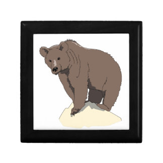 grizzly-bear-standing-on-rock-vector-clipart gift box