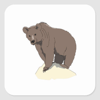 grizzly-bear-standing-on-rock-vector-clipart square sticker