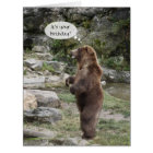 Grizzly Bear Standing Ovation BIG Card