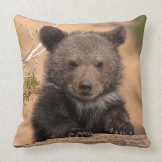 Grizzly bear (Ursus arctos horribilis) Throw Pillow
