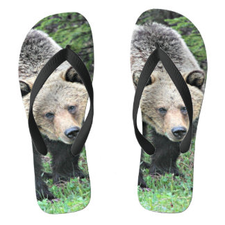 Grizzly Bear Walking In The Woods Thongs