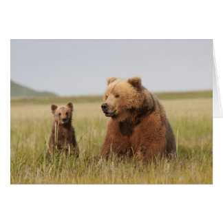Grizzly Bear with Cub Card