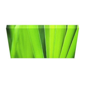 grooming green canvas print