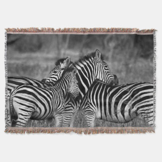 Grooming zebra throw blanket